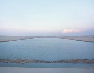 Wildlife Thrive at Flooded 'Arabian Canal' in Dubai Desert