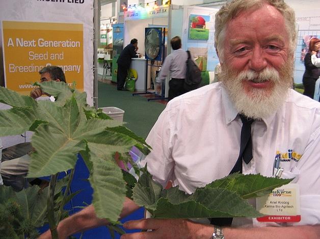 kaiima seed technology