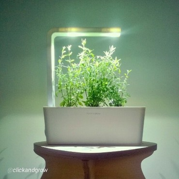 """Smart herb garden"" by Click & Grow will make you dumb"