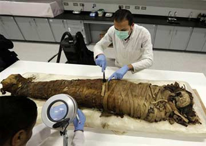 Holy sh*t! Mummies float in Egyptian sewage!