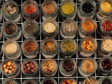 ICARDA scientists save 80% of a priceless trove of Syrian seeds