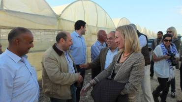 US supports hydroponics to revitalize Mideast food, water and security