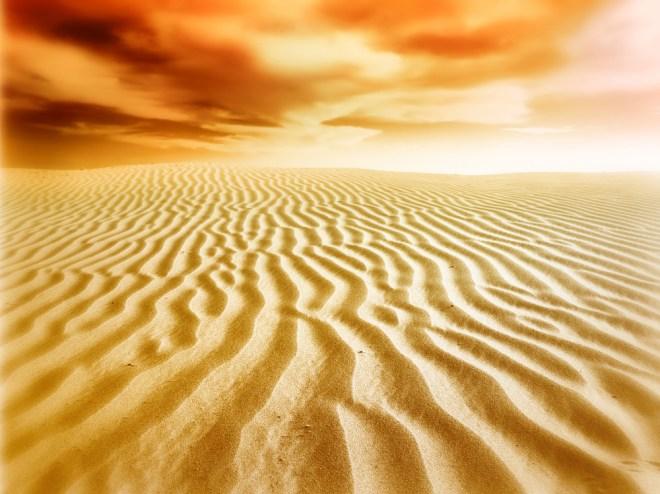 Western Sahara solar development