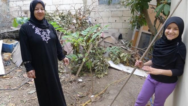 building-community-garden