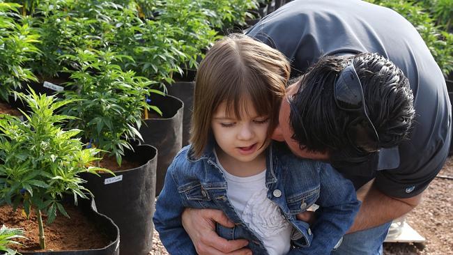 charlotte-ligi-cannabis-medicine-shackelford