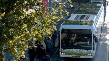 Botobus: Istanbul public transit goes botanical and organic!