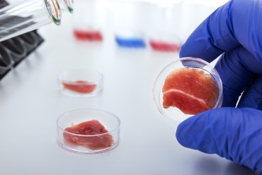 Could test-tube meat be the future of food?