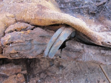 A million mummies unearthed in Egypt – can you dig it?