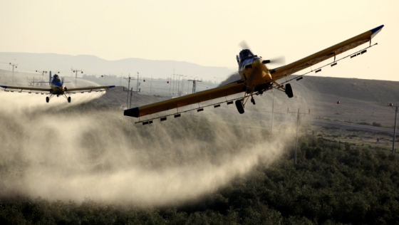 How pesticides can ruin your future