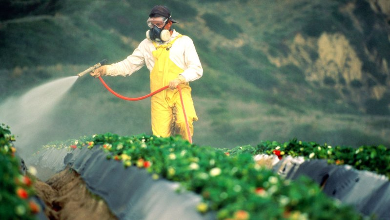 EU decision will pull Monsanto weedkiller off market shelves