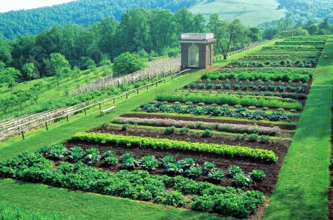 Thomas Jefferson's food garden at Monticello.