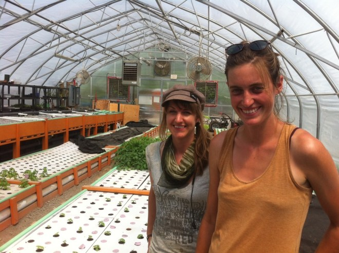 water-farmers-aquaponics-toronto