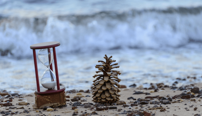 water-lebanon-time-pine-cone