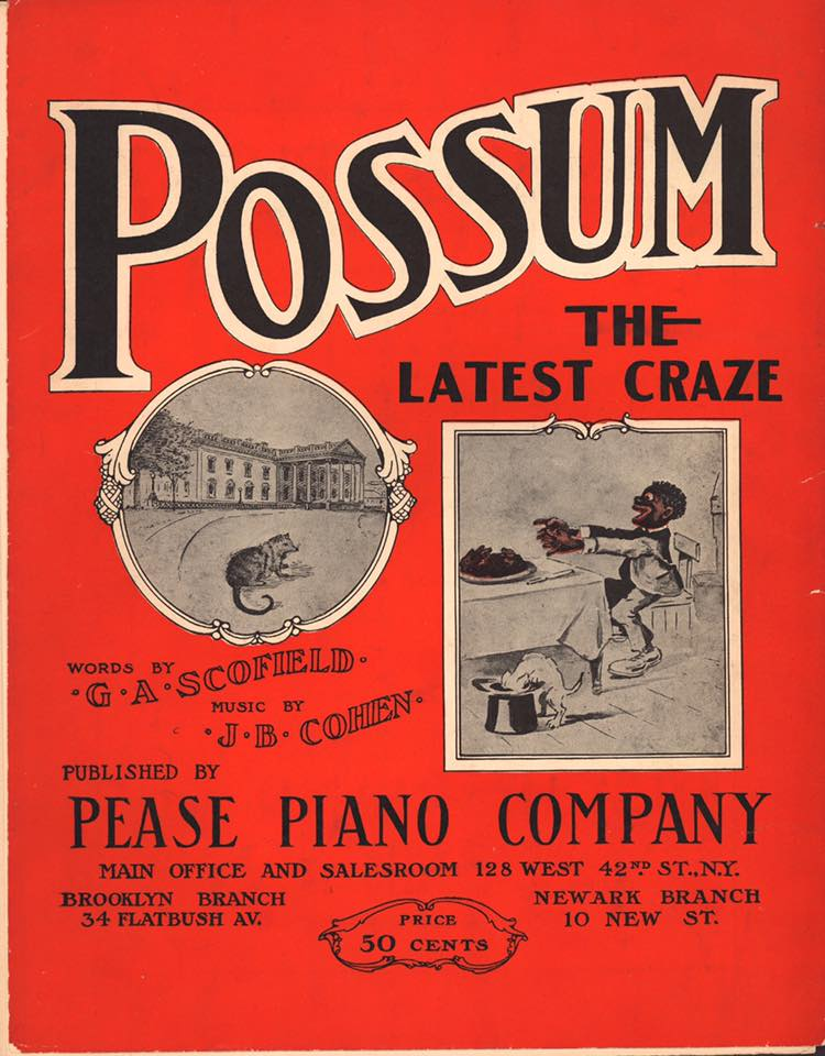 Possum - the Latest Craze