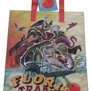 Trader Joe's Reusable Bag from Florida