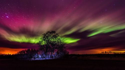 The Northern Lights from Estonia Photo by Kristian Pikner- Auroras - The Northern or Southern Lights – Greetings from the Past
