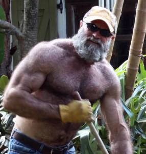 big daddy bear cock