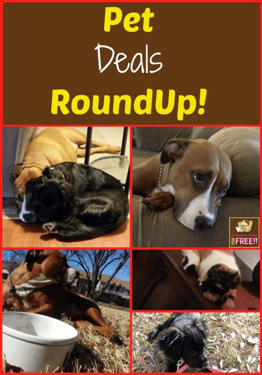 Pet Deals RoundUp