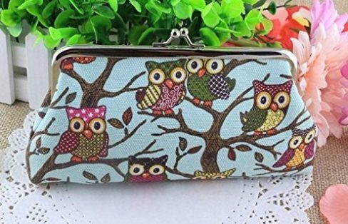 CUTE Owl Design Canvas Clutch Bags ONLY $3.10 + FREE Shipping!
