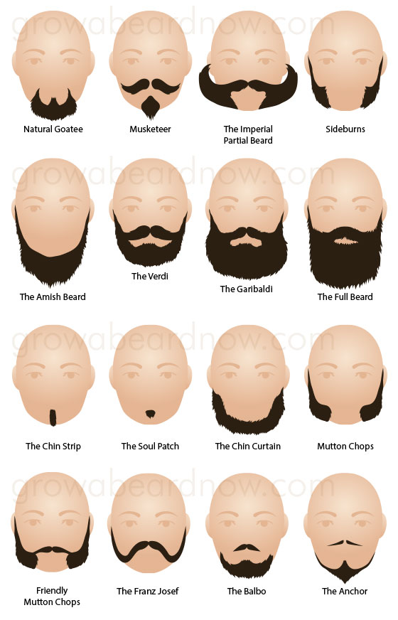 A collection of popular facial hair styles.