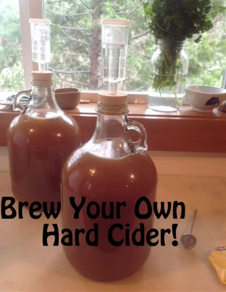 How to Make Your Own Apple Cider Vinegar Facial Toner: I am sure many of you keep apple cider vinegar in your kitchen pantry for a variety of different dishes, vinaigrettes, pickled whatevers and so on.