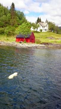 Norway Pt 2-281