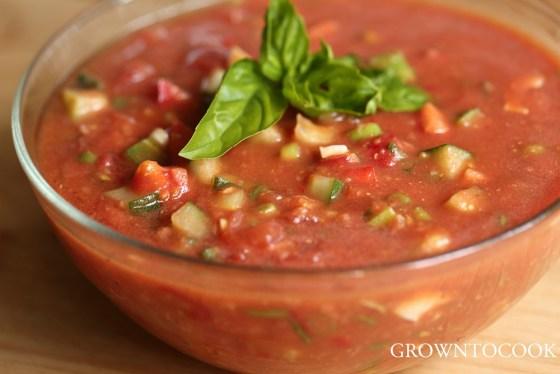 Andalusian soup salad