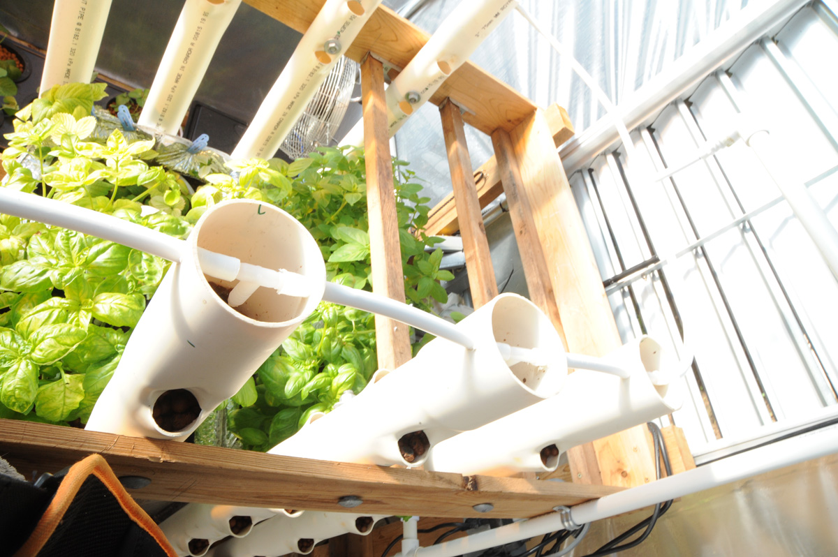 Sterling This Diy Vertical Aquaponics System Grozinegrozine Diy Vertical Garden Systems From Pallet Diy Vertical Aquaponics System Ready To Notice Both Sides Can Beused garden Vertical Garden Systems Diy