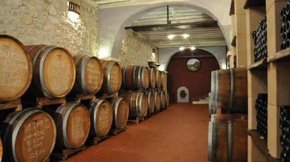vina-zadro-0701215.jpg