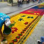 Representantes del Récord Guinness hicieron entrega este Jueves Santo de la certificación que acredita que Guatemala logró la alfombra más grande del mundo