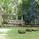 Sitio Arqueológico Nakum, Petén Guatemala