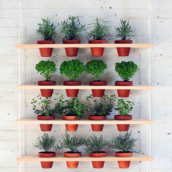 7 idee per realizzare un giardino verticale in maniera for Giardino rustico traliccio decorativo