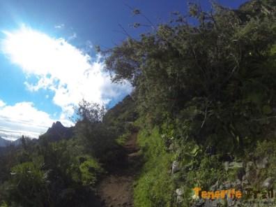 Alto de Los Catalanes (destino La Fortaleza, valla en el sendero)
