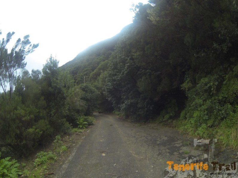 Carretera vieja pico del inglés sendero a la derecha a Los Catalanes