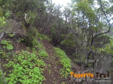 Inicio vertical en la zona de Roque Negro