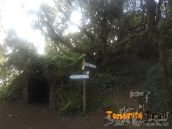 Inicio de Las Vueltas (confluencia con sendero Valle Brosque)