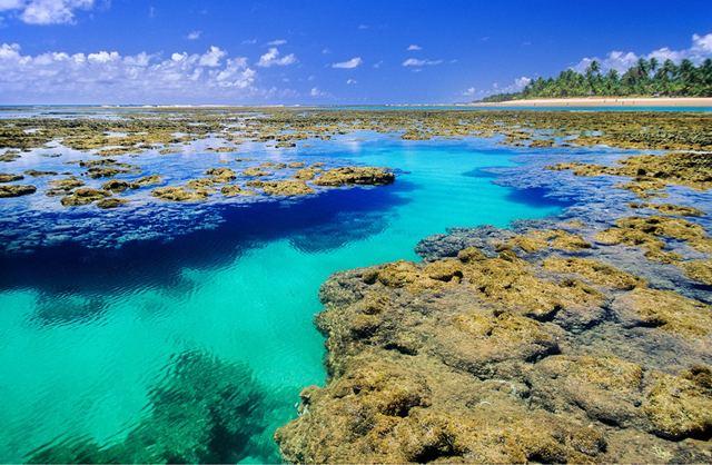 Piscinas Naturais da Praia de Taipus de Fora