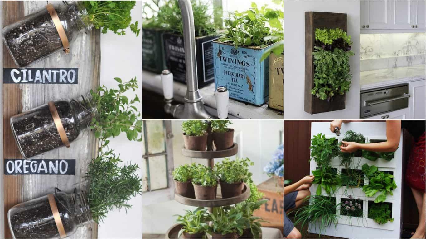 15 modi per decorare il giardino a natale fai da te creativo - Coltivare piante aromatiche in casa ...