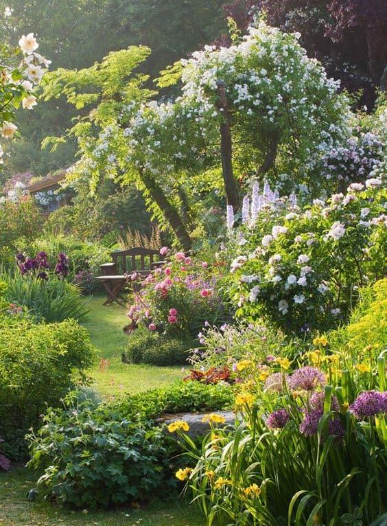 Semplice trucco per accelerare la crescita delle piante e renderle bellissime guida giardino - Piante bellissime da giardino ...