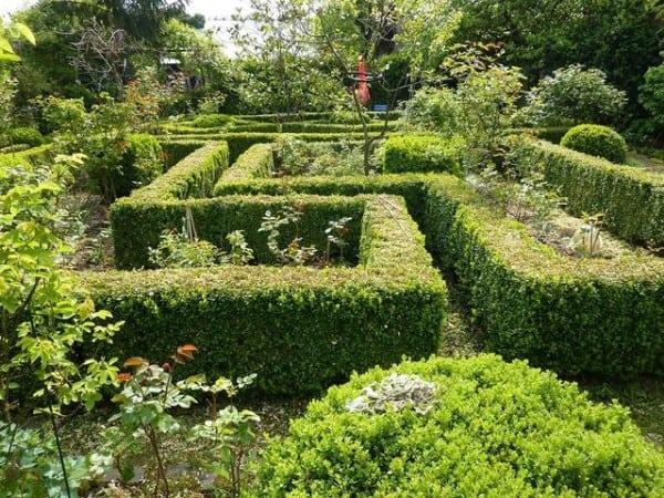 Creare un labirinto nel giardino quali sono gli arbusti for Giardino labirinto