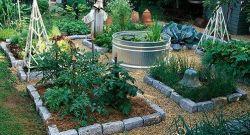 Come realizzare un orto a bassa manutenzione