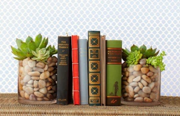 Come realizzare un ferma-libri decorativo con le succulente