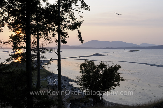 Sidney Spit at sunset, Gulf Islands National Park Reserve of Canada, Sidney Island, British Columbia, CanadaSidney Spit, Gulf Islands National Park Reserve of Canada, Sidney Island, British Columbia, Canada