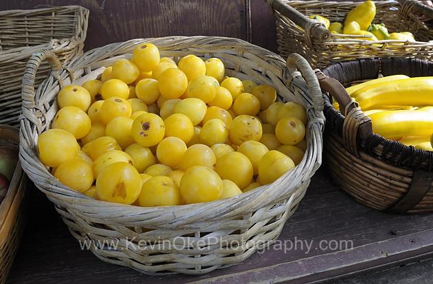 Yellow plums, Mayne Island Farmers Market, Miners Bay, Mayne Island, British Columbia, Canada