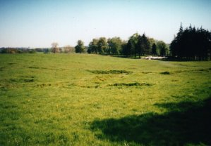 Contoh Surat Keterangan Riwayat Tanah