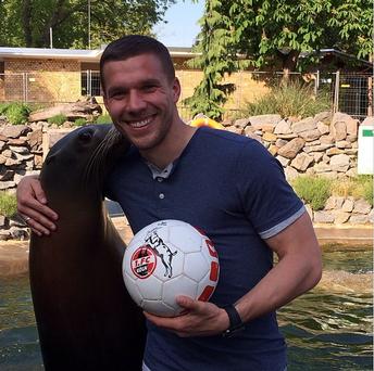 What next on Poldi's Menu?