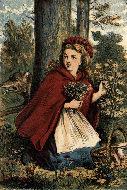 LITTLE RED RIDING HOOD GATHERING FLOWERS.