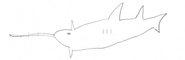enfant-aquarium-26b