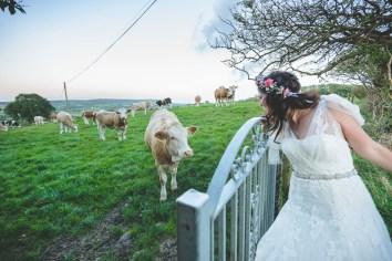 JandH_wedding_085