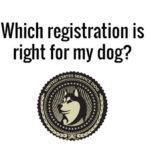 United States Service Dog Emblem